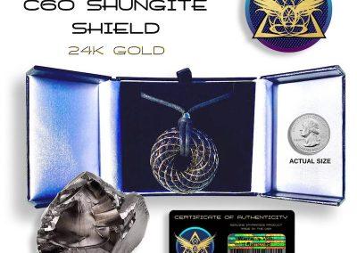 shungite_gold_pendant_iTORUS Orgone Pendant