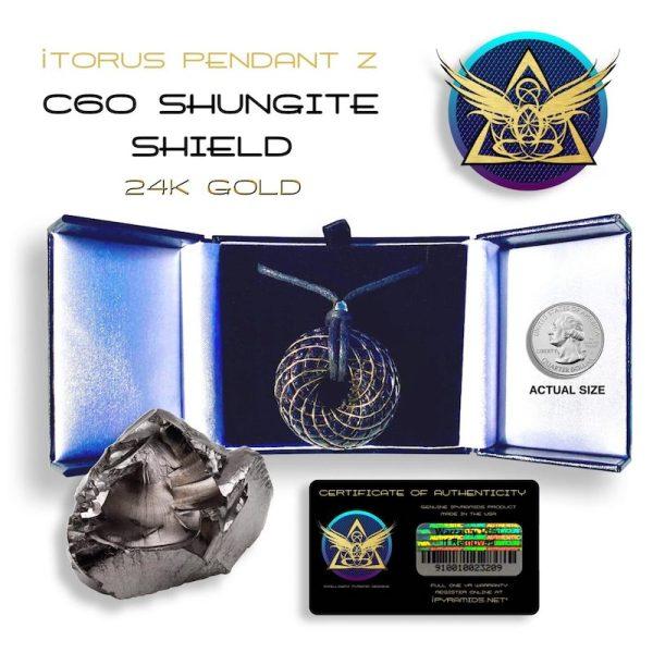 shungite_gold iTORUS Orgone Pendant