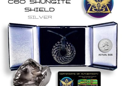 shungite_silver_iTORUS Orgone Pendant